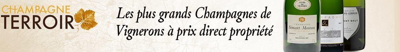 Les plus grands champagnes de vignerons à prix direct propriété
