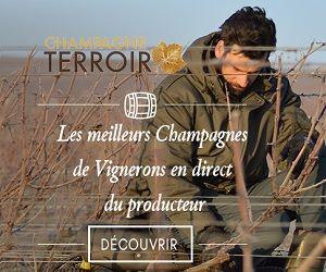 Champagne Terroir carré