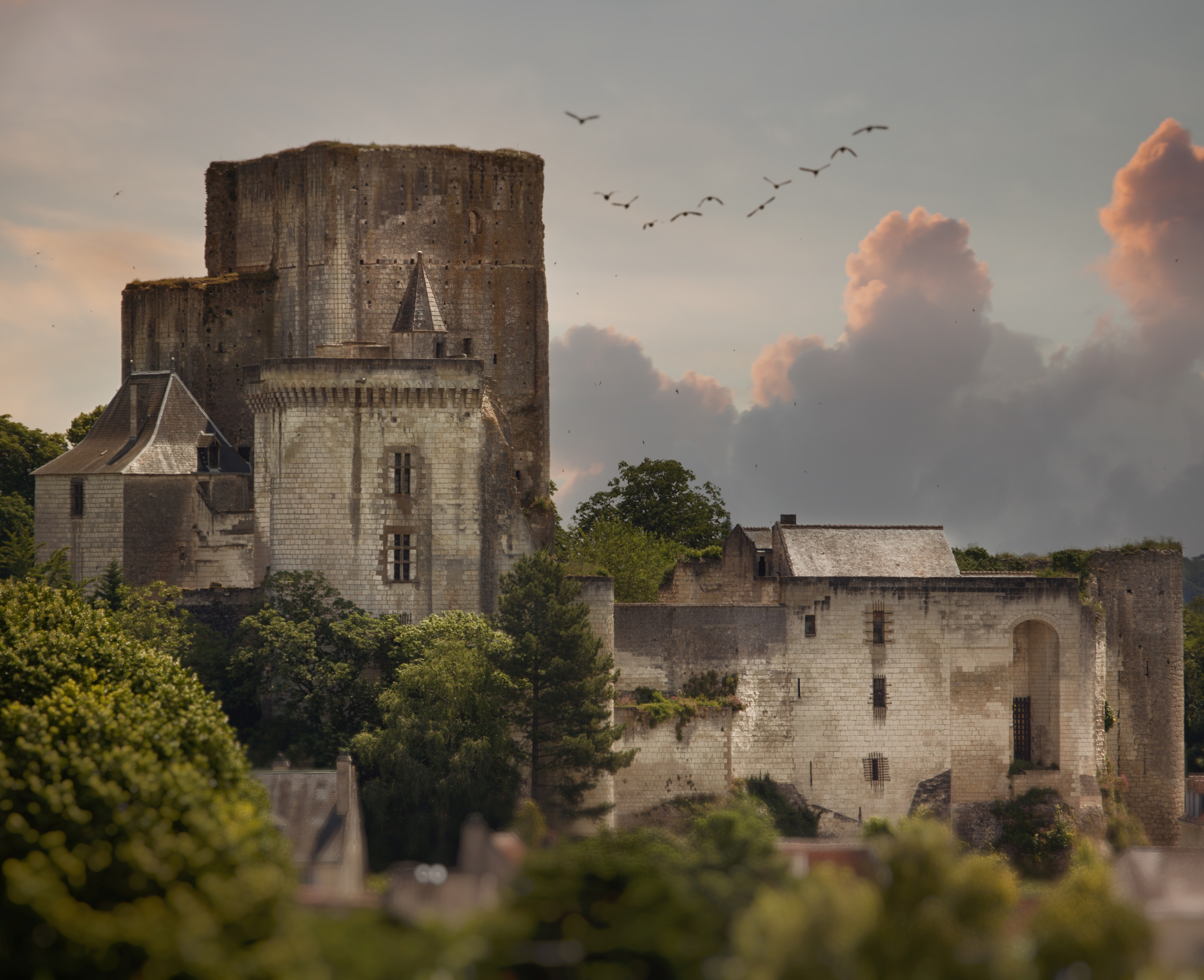 Donjon de la Forteresse Royale de Loches © Chanel Koel